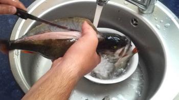 Почистить окуня