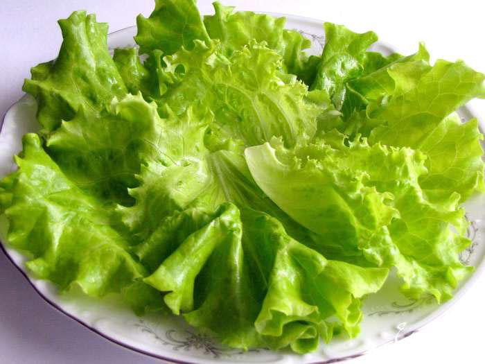 лист салата на тарелке