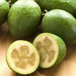 Плоды фейхоа: полезные свойства и противопоказания