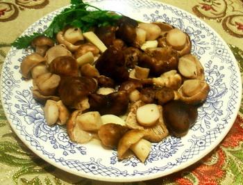 Посолить грибы на зиму