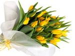 Кому можно дарить желтые цветы. И можно ли?
