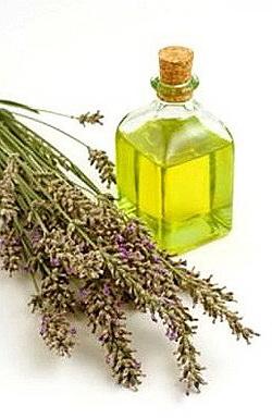 Природные антибиотики эфирные масла